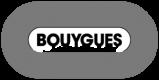 BOUYGES LOGO grises